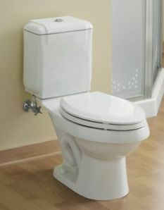 Elite Home Remodeling - Dual Flush Toilet